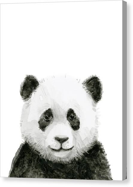 Panda Canvas Print - Baby Panda Watercolor by Olga Shvartsur