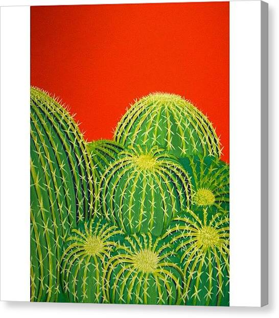 University Canvas Print - Barrel Cactus by Karyn Robinson