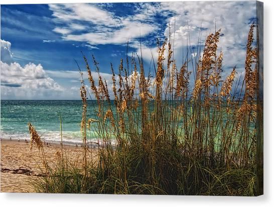 Beach Grass II Canvas Print