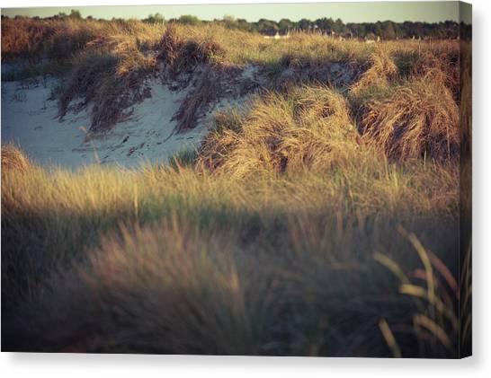 Beach Houses And Dunes Canvas Print