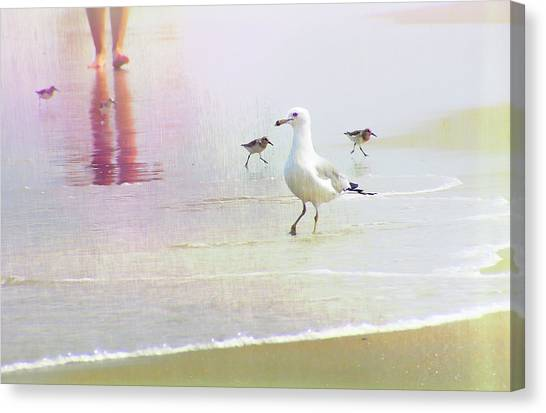 Beach Walk Canvas Print by JAMART Photography