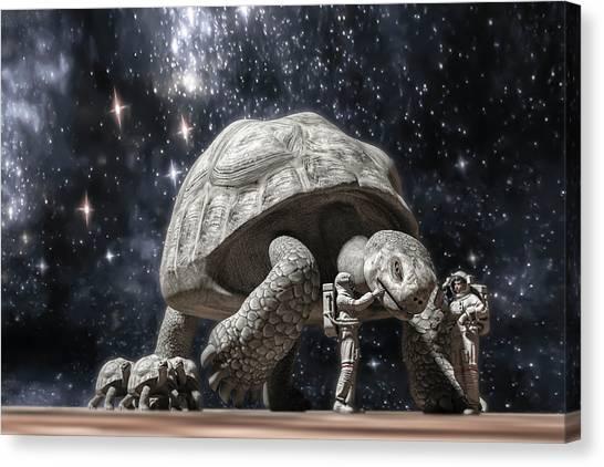 Tortoises Canvas Print - Beautiful Creatures by Betsy Knapp