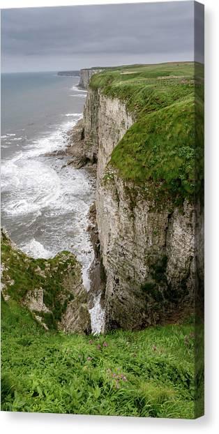 Razorbills Canvas Print - Bempton Cliffs by Nigel Wooding