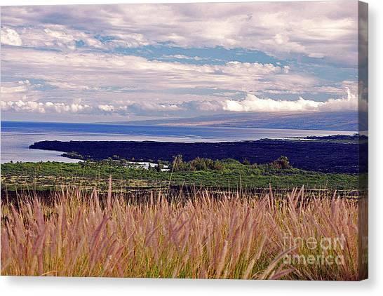 Big Island Landscape 1 Canvas Print
