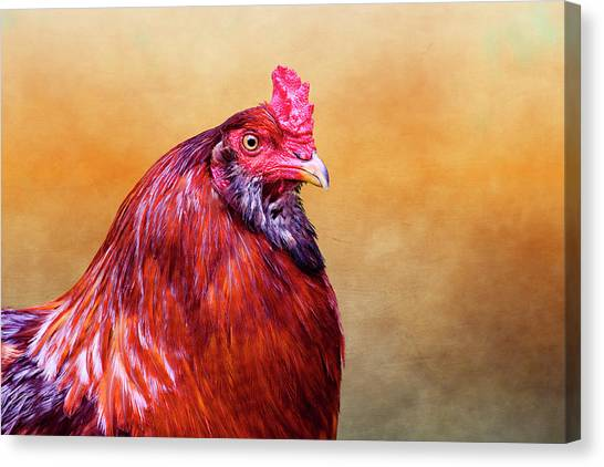 Chicken Farms Canvas Print - Big Red Rooster by Carol Leigh