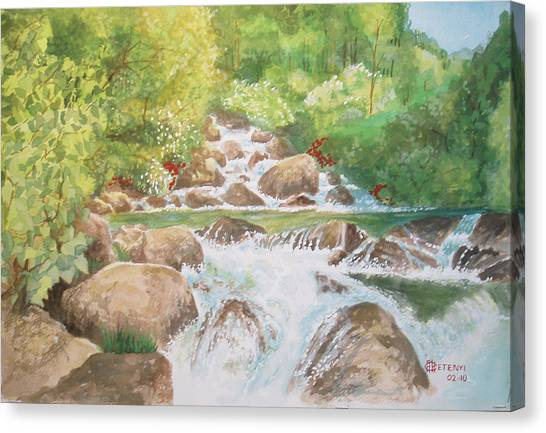 Bishop Creek South Fork Canvas Print by Charles Hetenyi