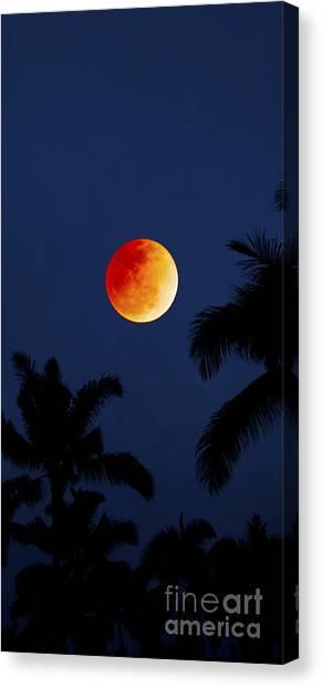 Nightcap Canvas Print - Blood Moon In Hawaii  - Triptych   Part 1of 3 by Sean Davey