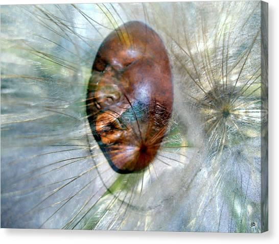 Blowing Dandelions Canvas Print