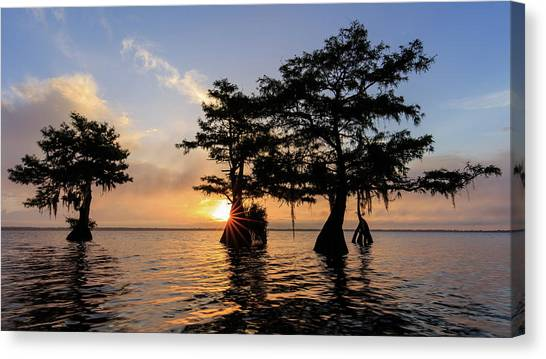 Blue Cypress Lake Morning Canvas Print