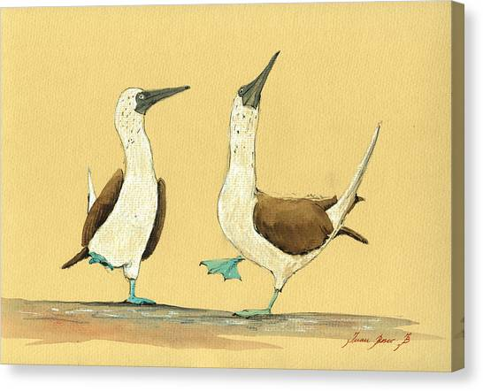 Watercolor Canvas Print - Blue Footed Boobies by Juan  Bosco