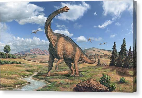 Brachiosaurus Canvas Print - Brachiosaurus Dinosaur by Joe Tucciarone