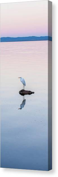 Water Birds Canvas Print - Breaking Dawn by Az Jackson