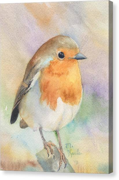 British Robin Canvas Print
