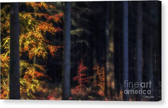 Broceliand's Light Canvas Print