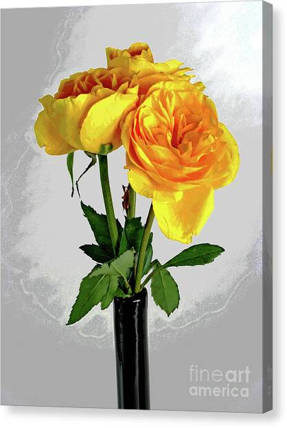 Captured Yellow Roses Canvas Print