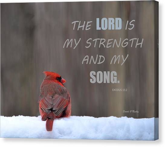 Cardinal In The Snowstorm With Scripture Canvas Print