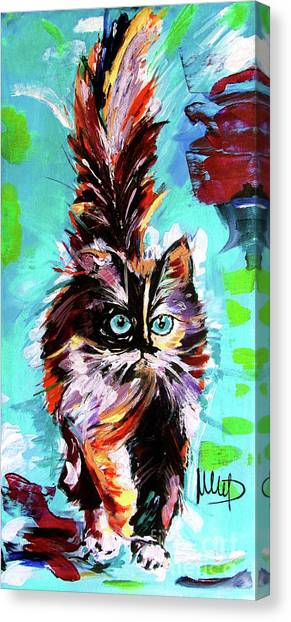 Persians Canvas Print - CAT by Melanie D