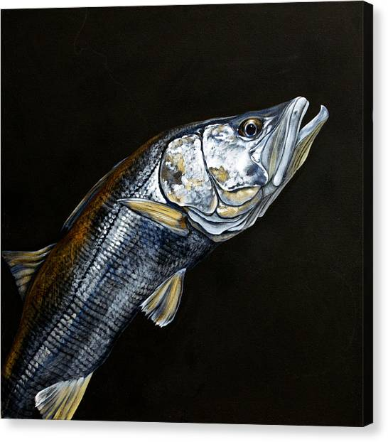 Caught In The Surf Snook Canvas Print