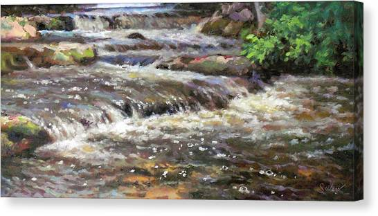 Cedar Creek Canvas Print by Larry Seiler