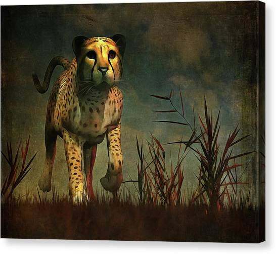 Cheetah Hunting During The African Night Canvas Print