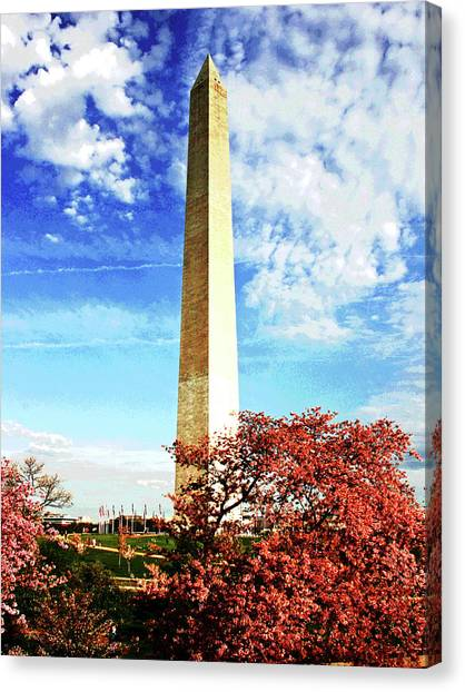 Cherry Blossoms At The Washington Monument Canvas Print