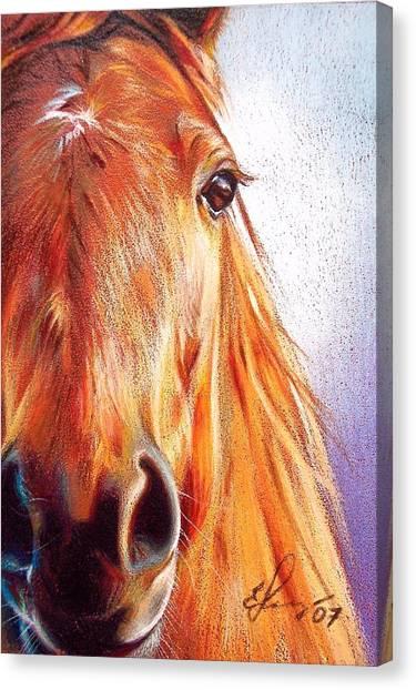 Chestnut Canvas Print by Elena Kolotusha