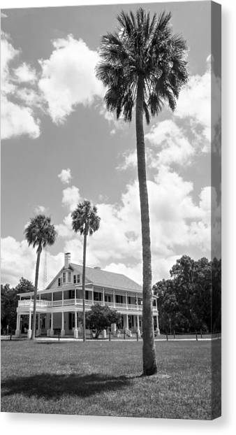 University Of South Florida Canvas Print - Chinsegutt Bw by Norman Johnson