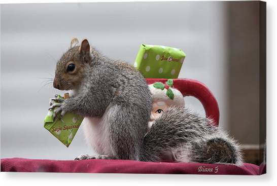 Christmas Squirrel Canvas Print