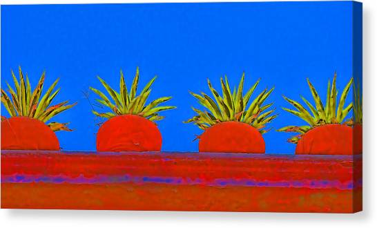 San Miguel De Allende Canvas Print - Colorful Potted Plants Mexico by Carol Leigh