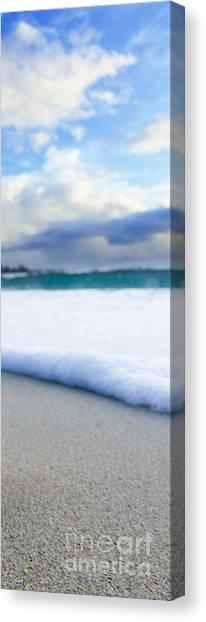 Desert Sunrises Canvas Print - Cone Shell Foam  -  Part 3 Of 3 by Sean Davey