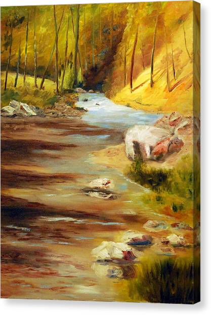 Cool Mountain Stream Canvas Print