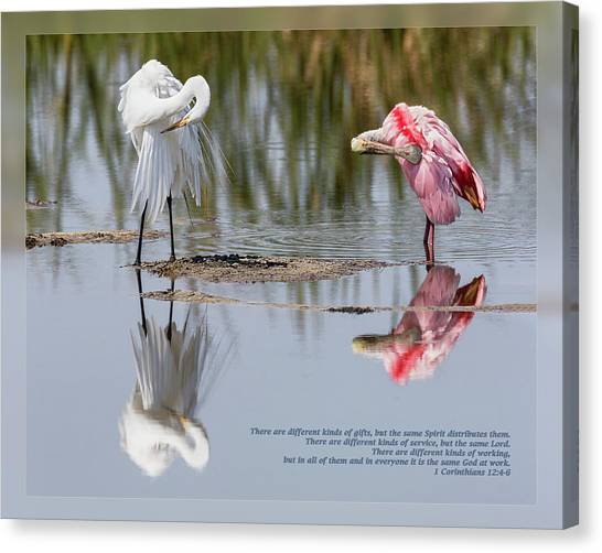 Canvas Print featuring the photograph 1 Corinthians 12 4-6  by Dawn Currie