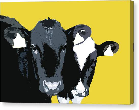 Cows - Yellow Canvas Print
