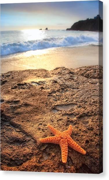 Crescent Bay Laguna Beach California Canvas Print