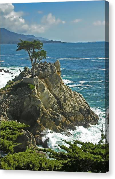 Cypress Point Ll Canvas Print