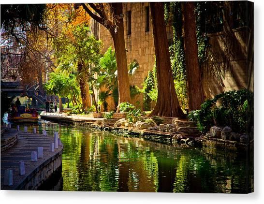 Cypress Trees In The Riverwalk Canvas Print