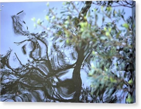 Dancing Leaves Canvas Print