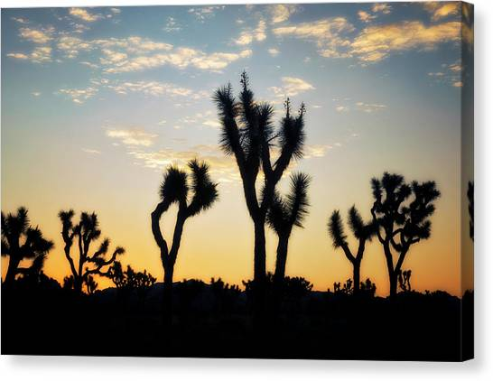 Mojave Desert Canvas Print - Day Break by Nicki Frates
