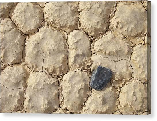 Death Valley Mud Canvas Print