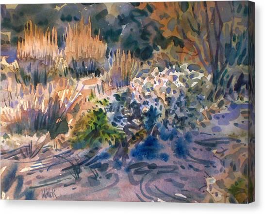 Desert Flora Canvas Print by Donald Maier