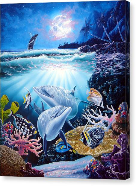 Dolphin Dream Canvas Print by Daniel Bergren