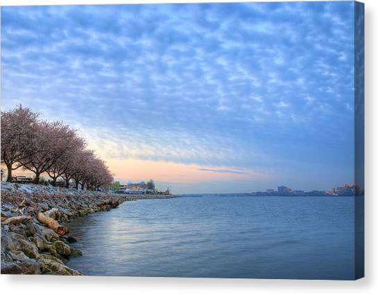 Down River Canvas Print by JC Findley