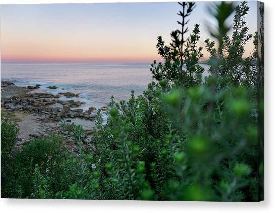 Sunset Horizon Canvas Print - Down To The Water by Az Jackson
