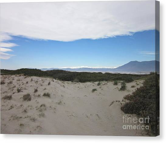 Dune In Roquetas De Mar Canvas Print