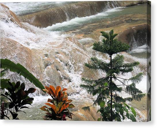 Dunns River Falls Canvas Print