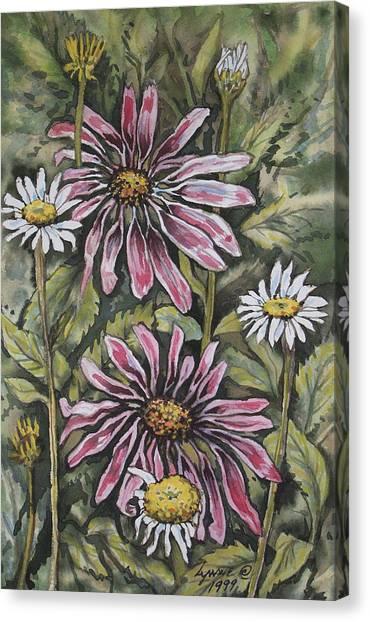 Echinachea And  Daisies Canvas Print