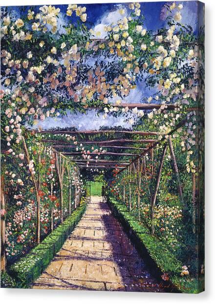 Arbor Canvas Print - English Rose Trellis by David Lloyd Glover