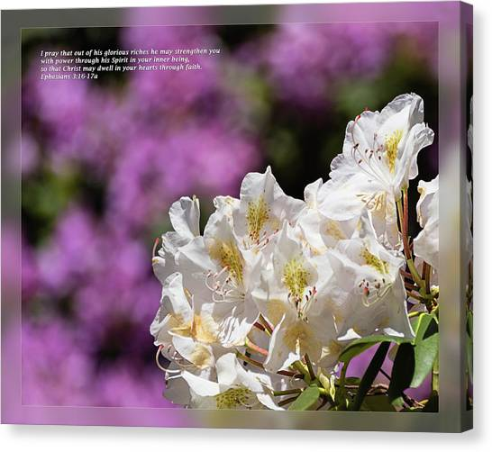 Canvas Print featuring the photograph Ephesians 3 16-17a by Dawn Currie