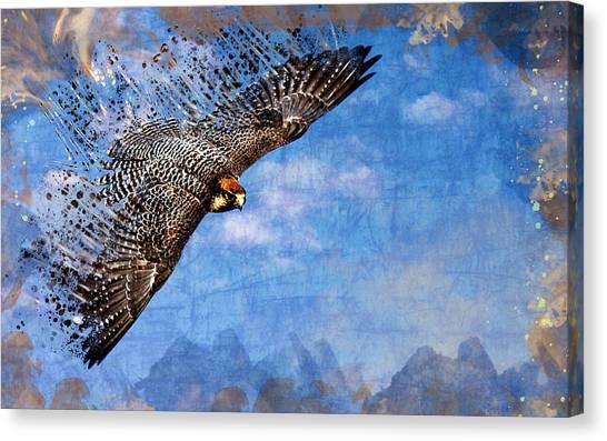 Pheasants Canvas Print - Falcon by Maye Loeser
