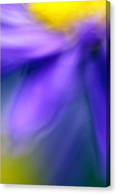 Decorativ Canvas Print - Fall Flower by Silke Magino